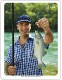 WEBBER PHOTO CARDS - VERBS-Verbi - Schede fotografiche