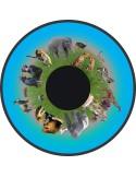 disco immagine