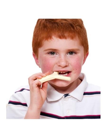ARK Y Chew dentaruolo